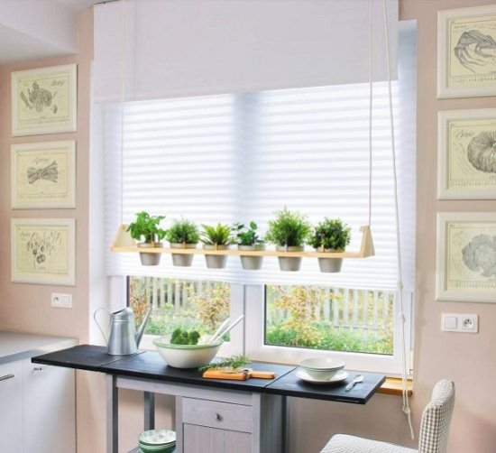 DIY Indoor Window Gardens 1
