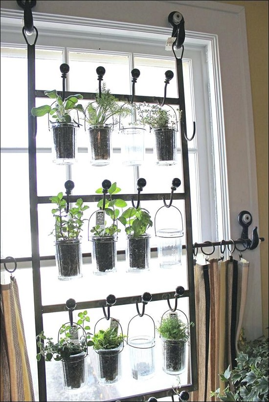 DIY Indoor Window Gardens 10