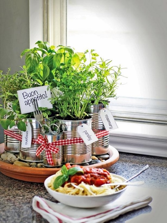 DIY Indoor Window Gardens 2