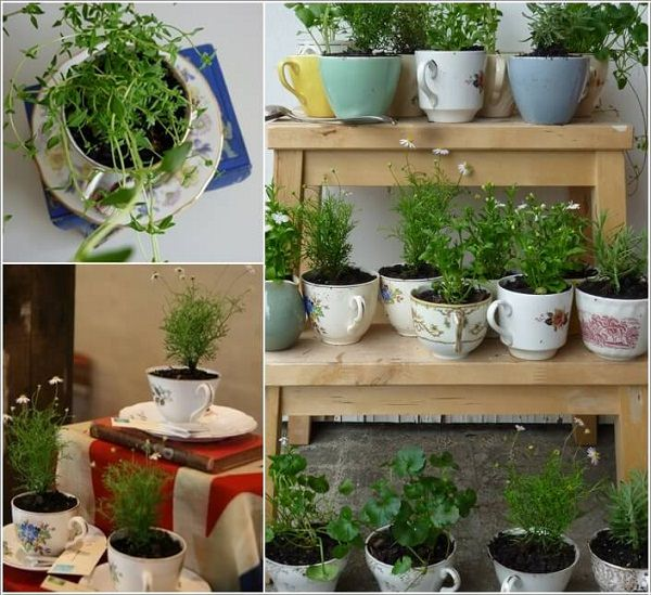 Indoor Small Herb Gardens 1