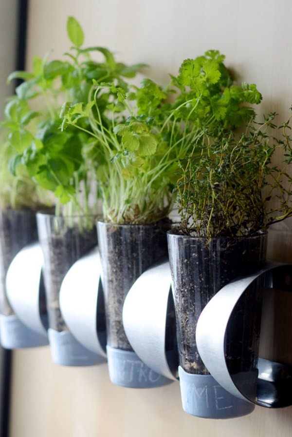 Indoor Small Herb Gardens 12