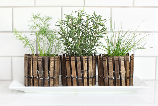 Indoor Small Herb Gardens 13