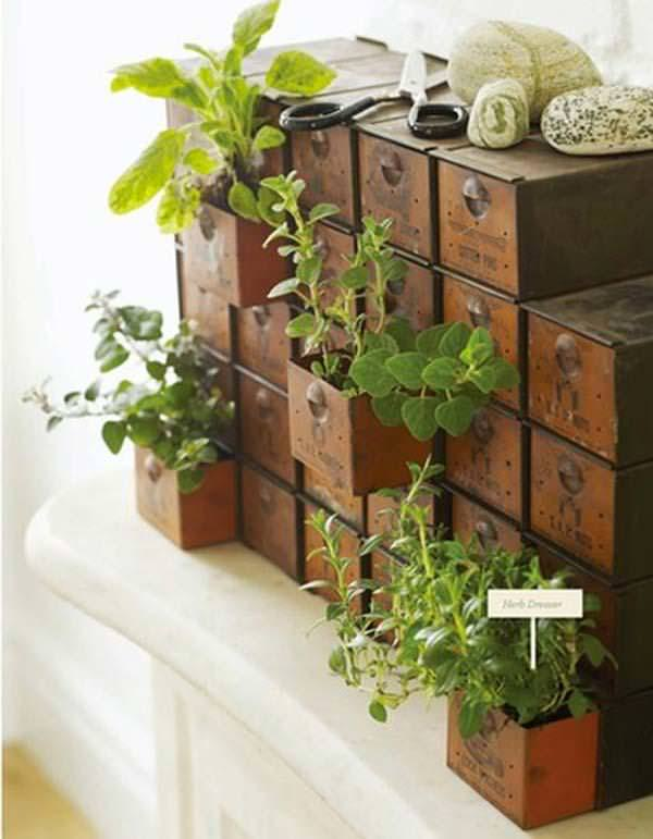 Indoor Small Herb Gardens 14