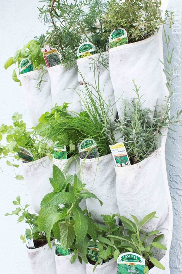 Indoor Small Herb Gardens 18