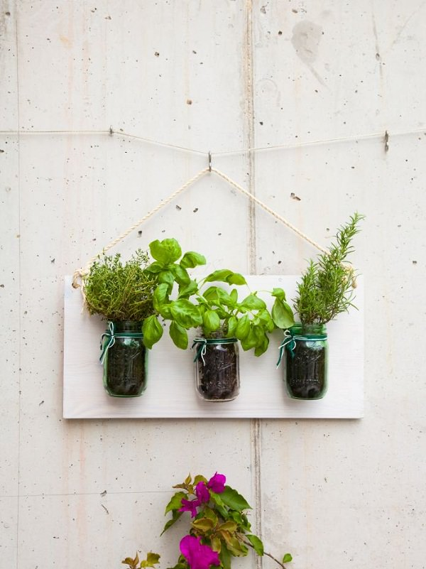 Indoor Small Herb Gardens 19