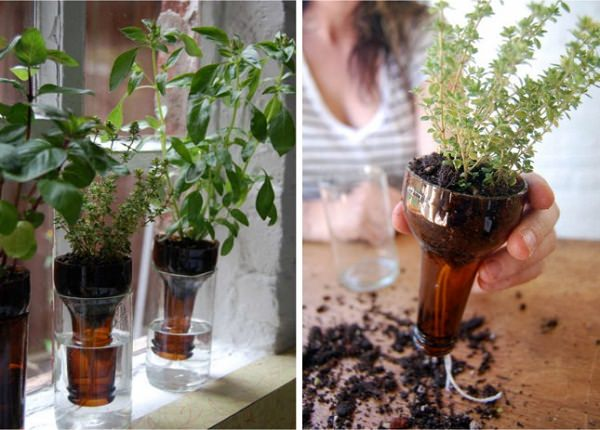 Indoor Small Herb Gardens 20