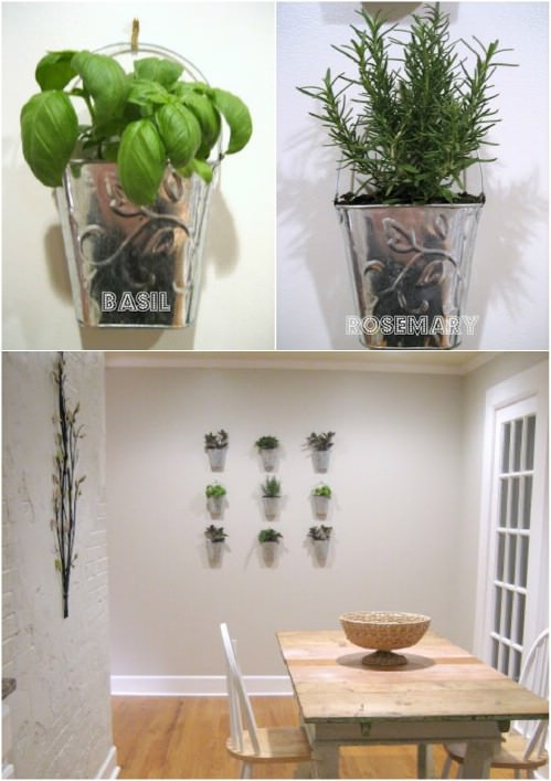 Indoor Small Herb Gardens 23