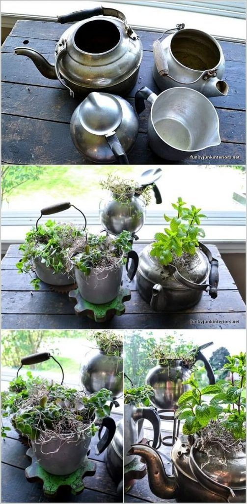 Indoor Small Herb Gardens 3