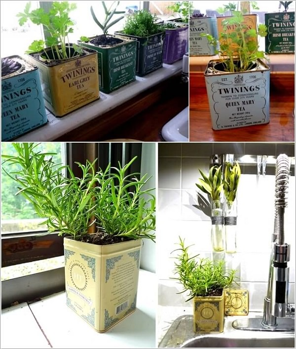 Indoor Small Herb Gardens 4