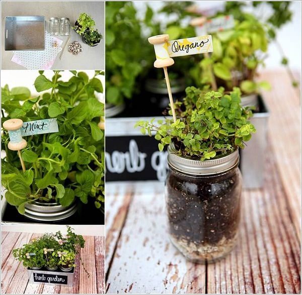 Indoor Small Herb Gardens 5