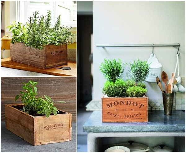 Indoor Small Herb Gardens 7