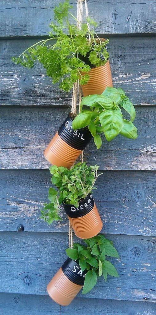 Indoor Small Herb Gardens 9
