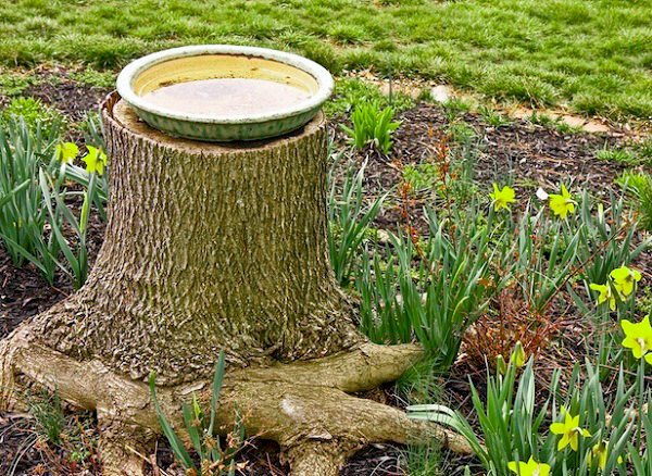 Tree Stump Decorations 22