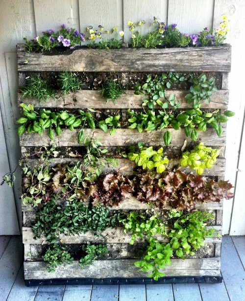 space-saving decorative garden ideas 3