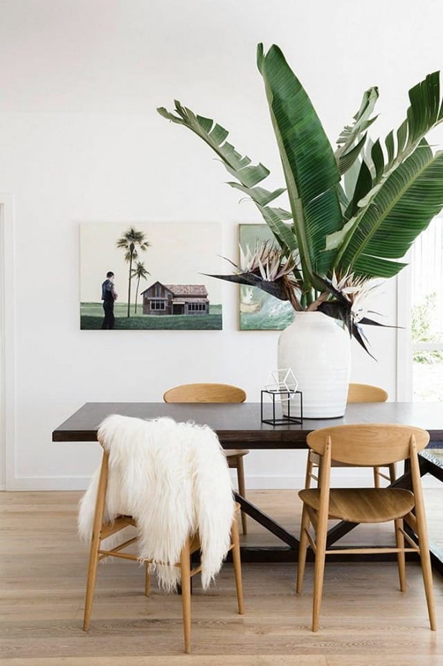 9 Hacks and Your Indoor Plants Won't Die Again