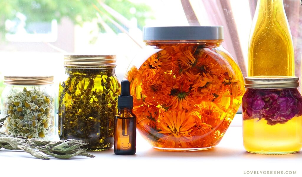 create-botanical-extracts